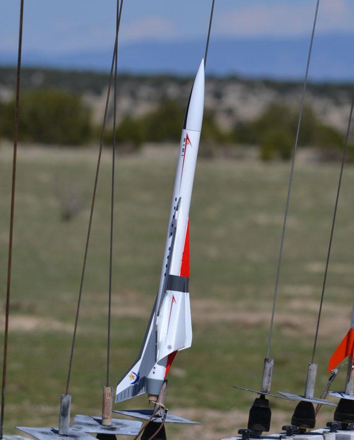 Shrockets Ibis model rocket